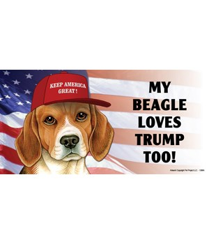 My Beagle loves Trump too! Magnet