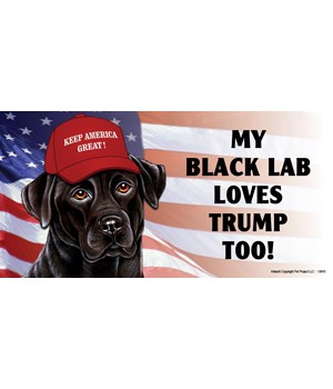 My Black Lab loves Trump too! Magnet