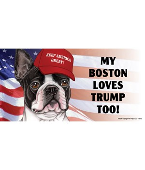 My Boston loves Trump too! Magnet