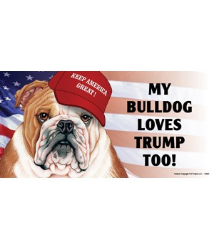 My Bulldog loves Trump too! Magnet