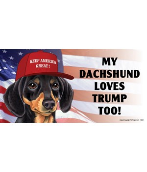 My Dachshund loves Trump too! (black & t