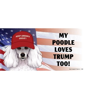 My Poodle loves Trump too! (white) Magne