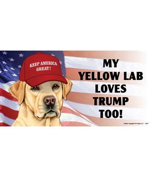 My Yellow Lab loves Trump too! Magnet