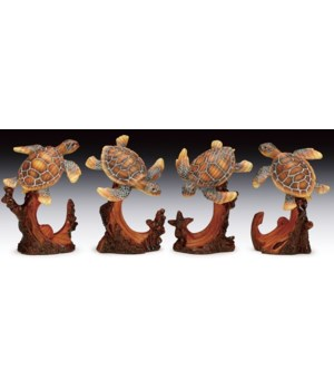 Sea Turtles 4 Asst / 12PC Unit