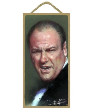 James Gandolfini (Tony Soprano) from The