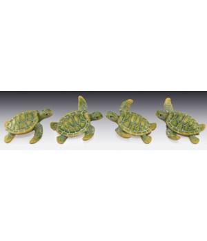 Sea Turtle Asst / 12PC Unit