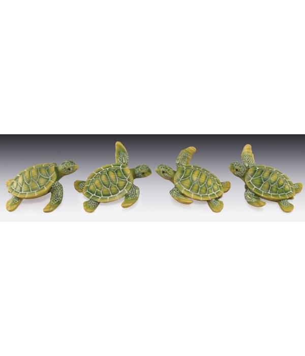 Sea Turtle Asst / 12PC Unit
