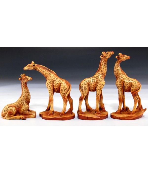 Giraffe Asst / 12PC Unit