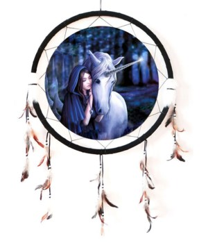 "Dreamcatcher 24"" Solace"