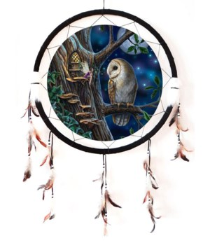 "Dreamcatcher 24"" Owl Medallion"