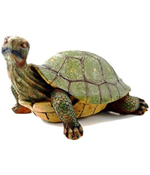 "L17"" Slow and Steady (Turtle) 1PC"