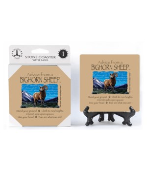 Advice Big Horn coaster 1pk