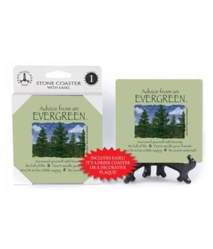 Advice from an Evergreen  coaster 1-pack