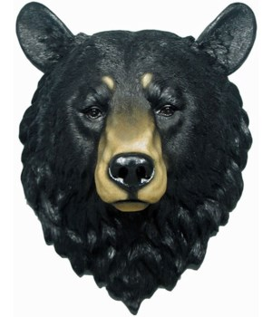 Grandfather bear head 17""