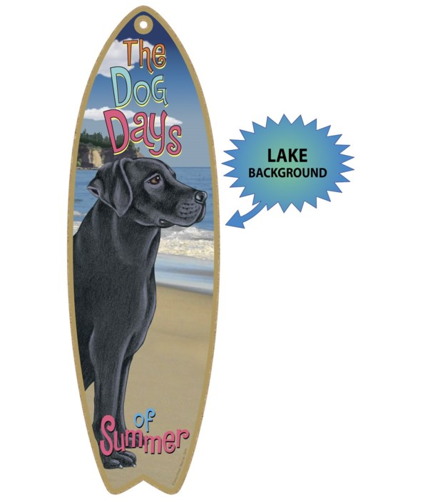 Surfboard with Lake bkgd -  Black Lab