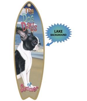 Surfboard with Lake bkgd -  Boston Terri
