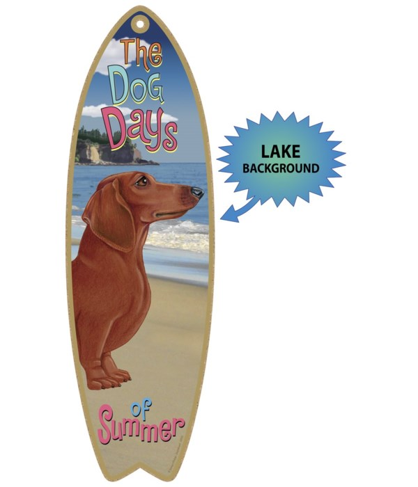 Surfboard with Lake bkgd -  Dachshund (R
