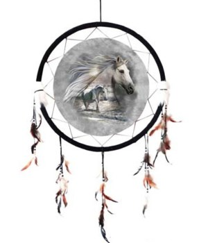 "Dreamcatcher 24"" Wolves w/ Indian"