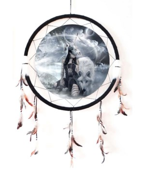 "Dreamcatcher 24"" wolf w/Indian"
