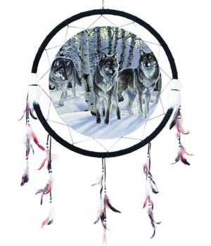"Dreamcatcher 24"" Wolves (3) - Birch Trees"