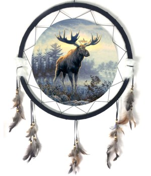 "Dreamcatcher 24"" Moose"