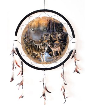 "Dreamcatcher 24"" Wolf pack & Sky Wolf"