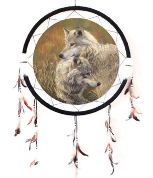 """Dreamcatcher 24"""" Wolves-2 in tan grass"""