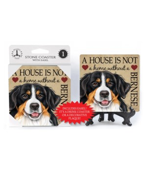 A house is not a home without a Bernese