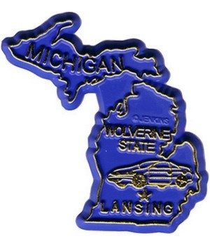 MI Bagged Map Magnet
