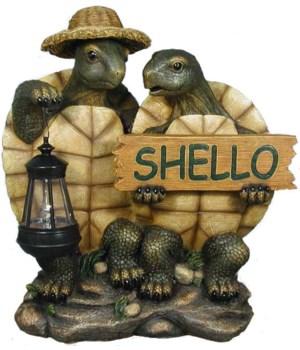 """15.25"""" 2 Turtles Shello 1PC"""