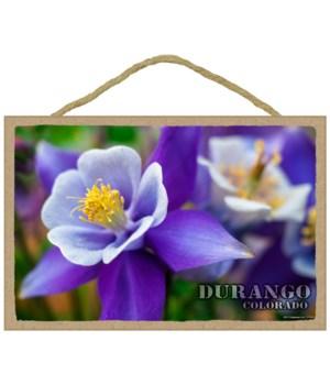 Durango, Colorado - Columbine flower in