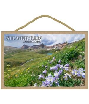 Silverton, Colorado - purple flowers on