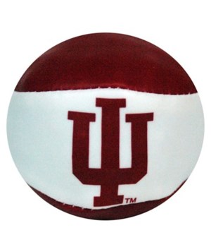 IN-U Ball Hackysack 24DP