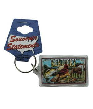 KY Keychain Lucite Mural