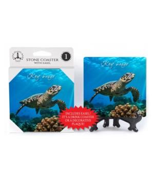 Key Largo - Sea Turtle