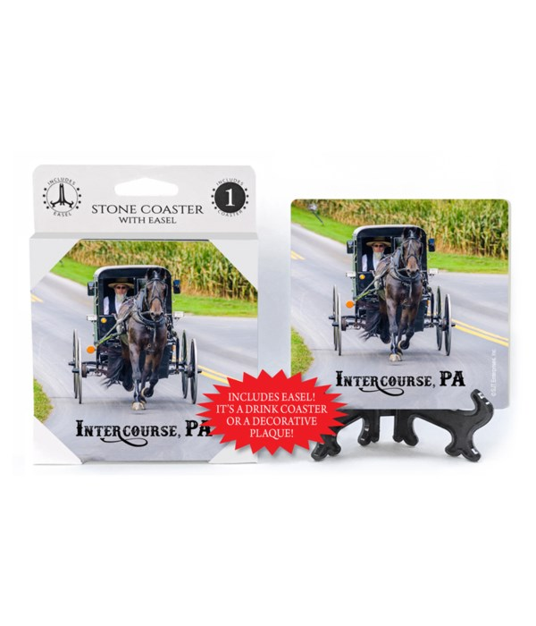Intercourse, PA -buggy w/ Amish driver C
