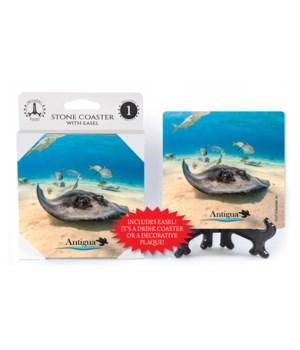 Antigua - Sting ray