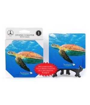 Antigua - Sea turtle