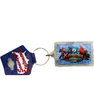 KY Keychain Lucite Elements