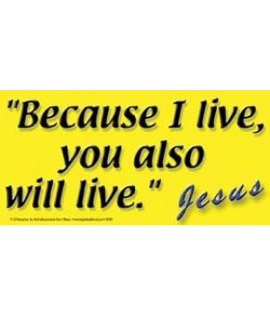 Because I live, you also will live. Jesu