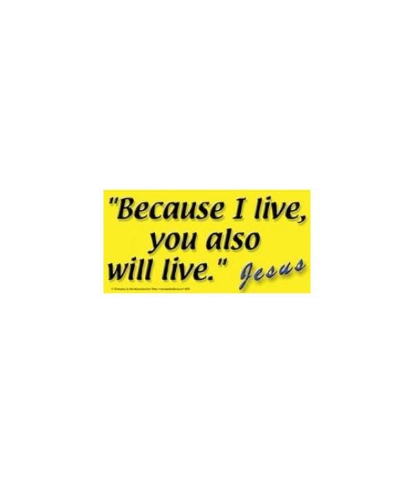 Because I live, you also will live. Jesu