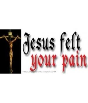 Jesus felt your pain. 4x8 Car Magnet