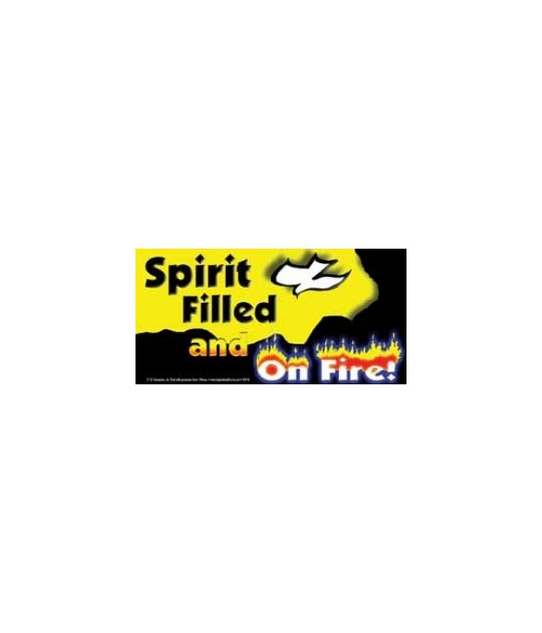 Spirit filled and on fire! 4x8 Car Magne