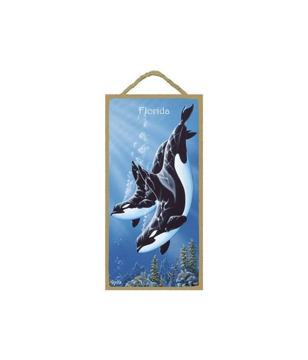 Apollo - 2 Orcas diving down (vertical)
