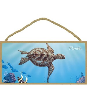 Apollo - Large sea turtle swimming to th