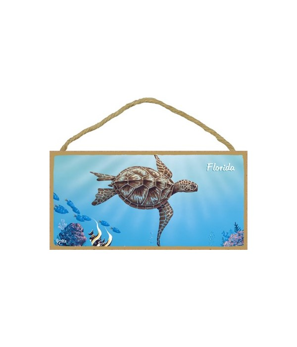 Apollo - Large sea turtle swimming to th