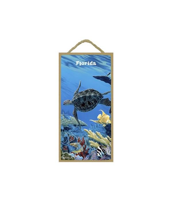 Apollo - Sea turtle swimming to the left