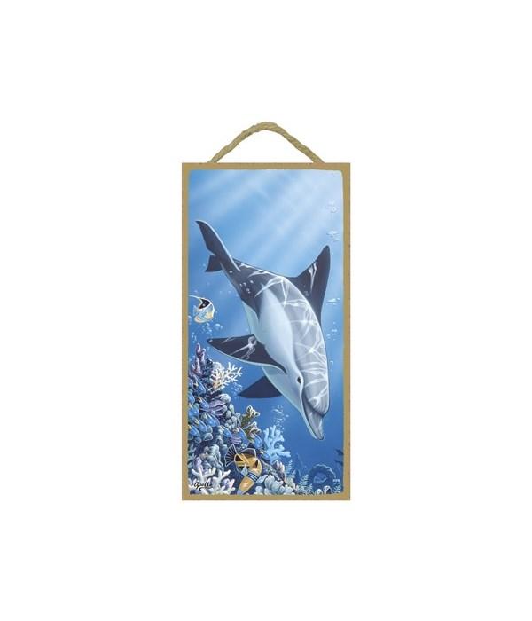 Apollo - (no IMPRINT) Dolphin swimming d