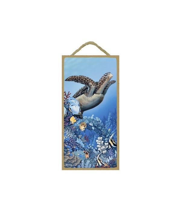 Apollo - (no IMPRINT) Sea turtle swimmin