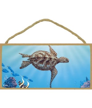 Apollo - (no IMPRINT) Large sea turtle s